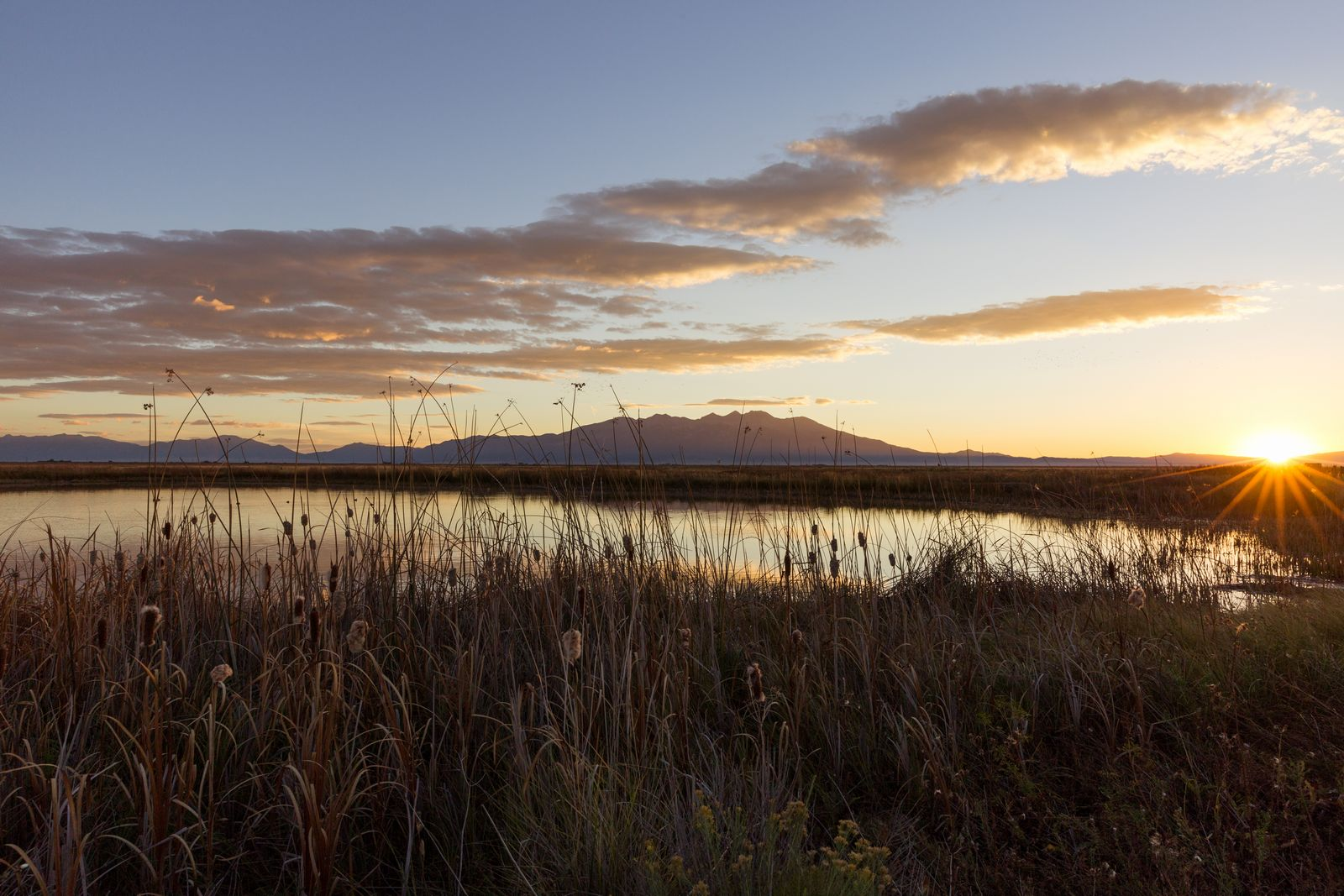 alamosa wildlife refuge sunrise 3