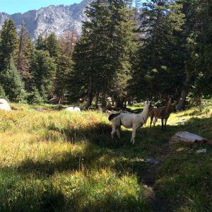 Hiking the Jeep Trail to Como Lake