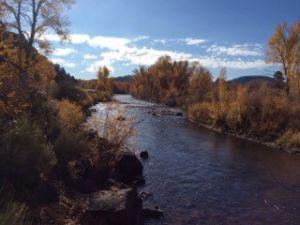 Fall Colors along the Conejos River